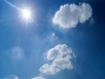 Over 2500 deaths in England linked to 2020 heatwaves