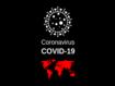 COVID-19: ein Jahr mit der Pandemie