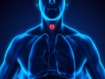 Global burden of thyroid cancer has considerable heterogeneity