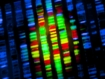 What hurdles do patients face accessing gene therapies?
