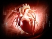 Ramipril shows long-term survival benefit in patients with acute myocardial infarction