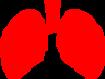 COVID-19: se observa función pulmonar anormal en uno de cada dos pacientes diez semanas después de enfermedad grave