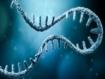 Más allá de las vacunas contra la COVID-19: ¿puede el ARN mensajero tratar también otras enfermedades?