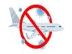 """""""Posponer 6 meses los vuelos no esenciales sería recomendable"""""""