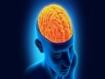 Primera guía propuesta para prevenir enfermedad de Alzheimer