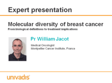 Molecular diversity of breast cancer From biological definitions to treatment implications
