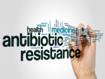 """Hacia el enfoque """"un mundo, una salud"""" para frenar la pandemia de la farmacorresistencia"""